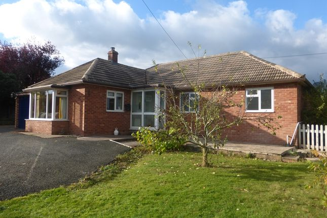 Thumbnail Detached bungalow for sale in Beulah, Moreton-On-Lugg, Hereford