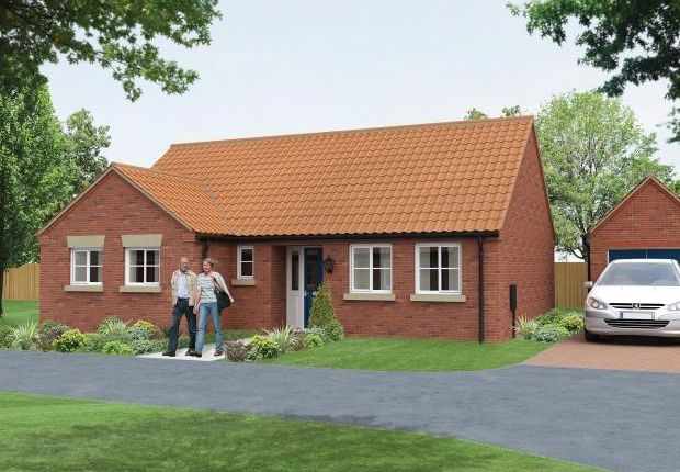 Thumbnail Detached bungalow for sale in Willoughby Road, Alford, Lincolnshire
