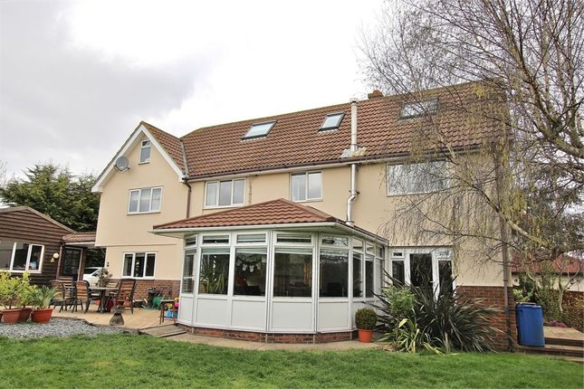 Thumbnail Detached house for sale in Ongar Road, Dunmow