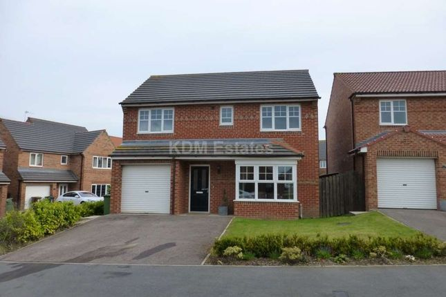 Thumbnail Detached house to rent in Bluebell Way, Hartlepool
