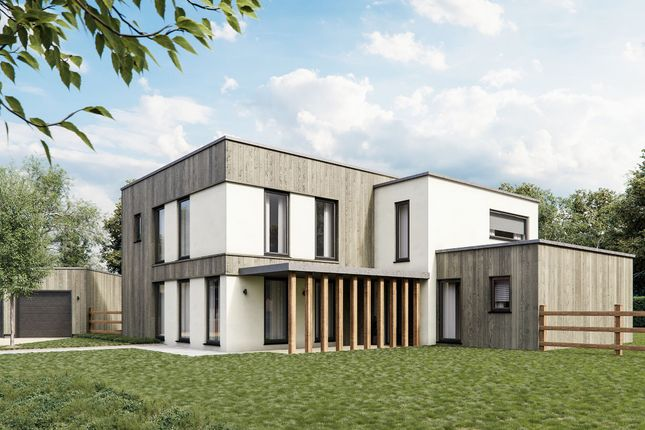 Thumbnail Detached house for sale in Springfield Meadows, Bullockspits Lane, Southmoor