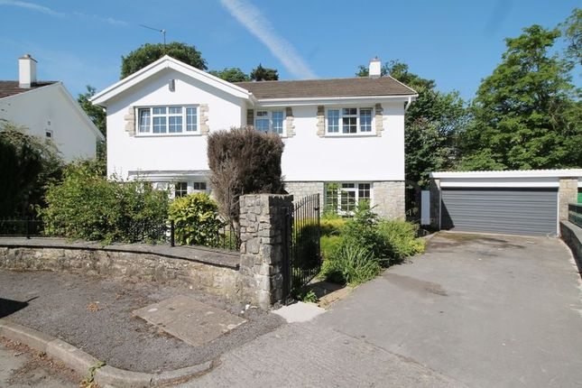 Thumbnail Detached house for sale in Forest Walk, Talbot Green, Pontyclun