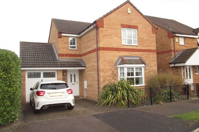 Thumbnail Detached house for sale in Wingfield Drive, Potton