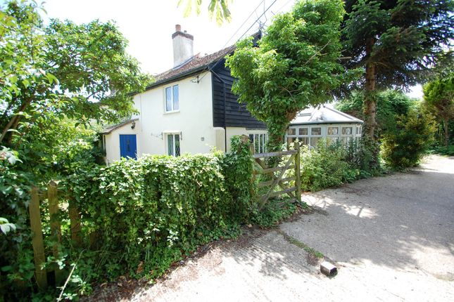 Thumbnail Cottage for sale in Grove Road, Tiptree, Colchester