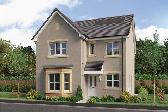 "Thumbnail Detached house for sale in ""Mitford"" at Red Deer Road, Cambuslang, Glasgow"