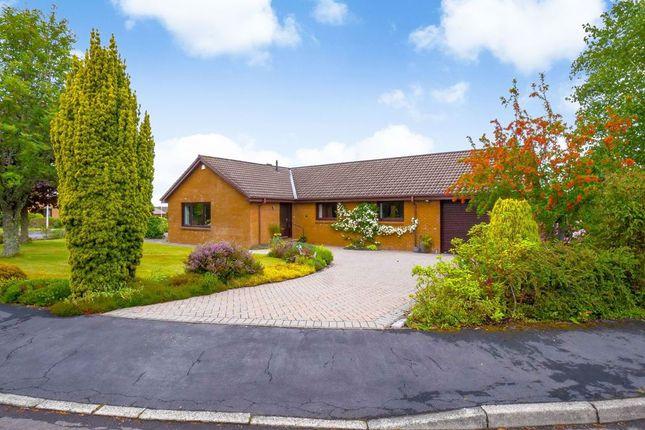Thumbnail Detached bungalow for sale in Grampian Avenue, Auchterarder