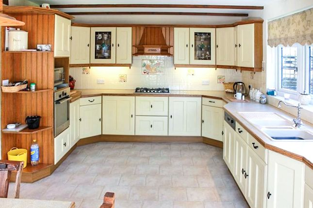 Thumbnail Detached house for sale in Eastcliff Avenue, Clacton-On-Sea