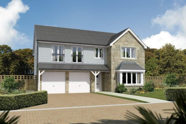 "Thumbnail Detached house for sale in ""Melton"" at Beech Path, East Calder, Livingston"