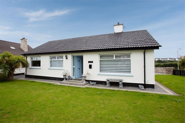 Thumbnail Detached bungalow for sale in Cromlech Park, Kilkeel, Newry, County Down