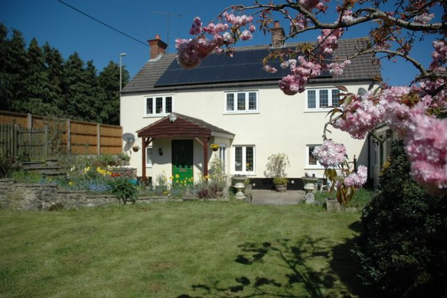Thumbnail Cottage for sale in Whitejoys, 27 Littledown, Shaftesbury, Dorset