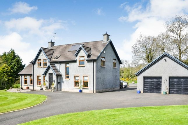 Thumbnail Detached house for sale in Casheltown Road, Ahoghill, Ballymena, County Antrim