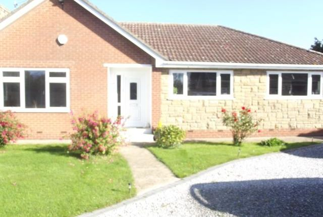 Thumbnail Bungalow to rent in New Village Road, Little Weighton