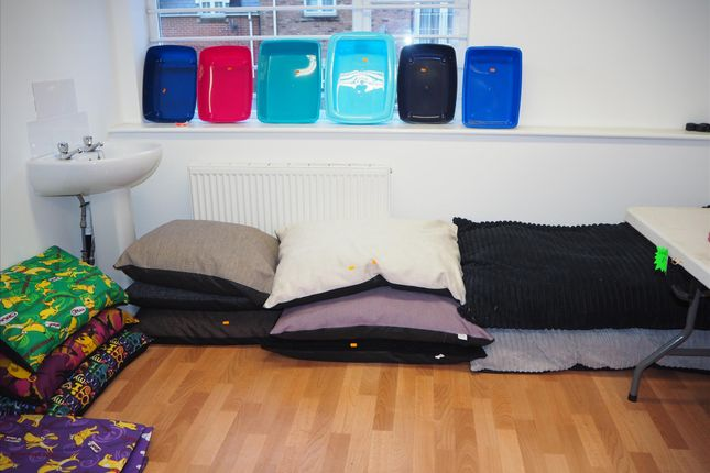 Photo 4 of Pets, Supplies & Services LS25, Sherburn In Elmet, North Yorkshire