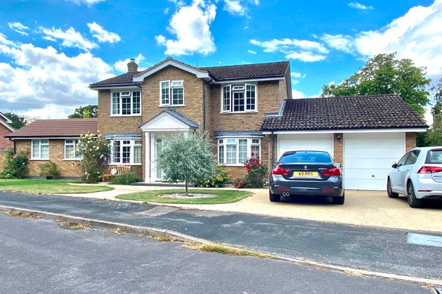 Thumbnail Detached house for sale in Cottage Green, Hartley Wintney, Hook
