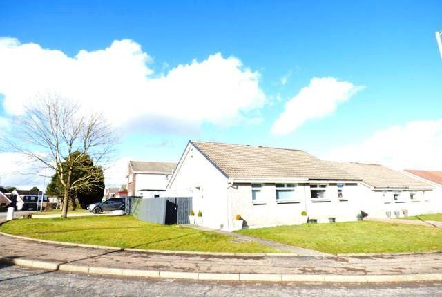 Thumbnail Semi-detached bungalow to rent in Aitken Road, Hamilton