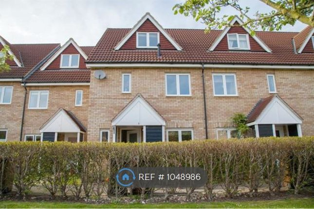 Thumbnail Terraced house to rent in Barnack Grove, Royston