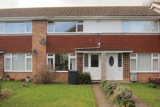 Thumbnail Terraced house to rent in Farne Close, Hailsham