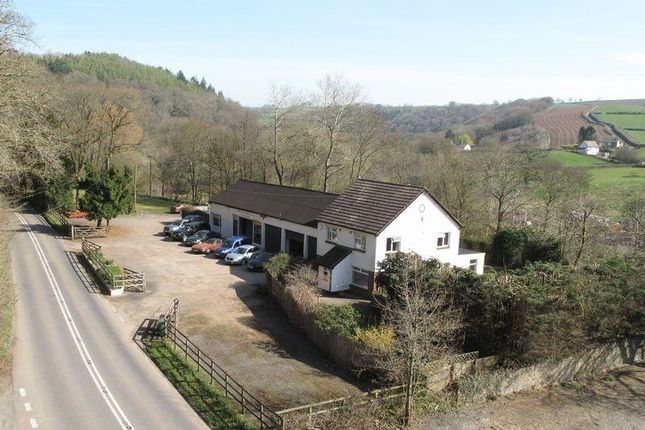 Thumbnail Detached house for sale in Burrington, Umberleigh