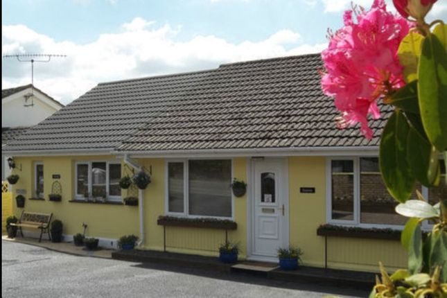 Thumbnail Bungalow for sale in Lloyds Terrace Adpar, Newcastle Emlyn