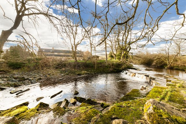 Lifestyle & Business Opportunity, St Johns Chapel, Weardale, County Durham DL13