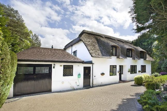 Thumbnail Cottage for sale in Fireball Hill, Ascot