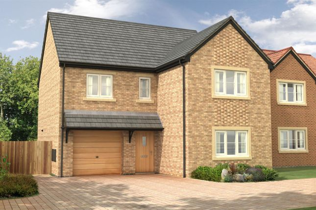 Thumbnail Detached house for sale in The Oak - Nursery Gardens, Station Road, Stannington