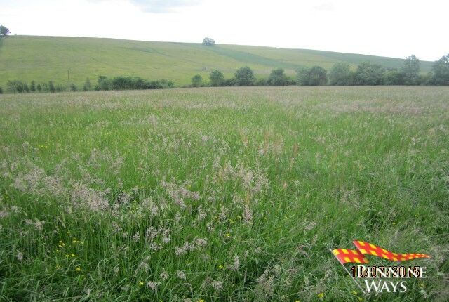 Thumbnail Land to rent in Bardon Mill, Northumberland