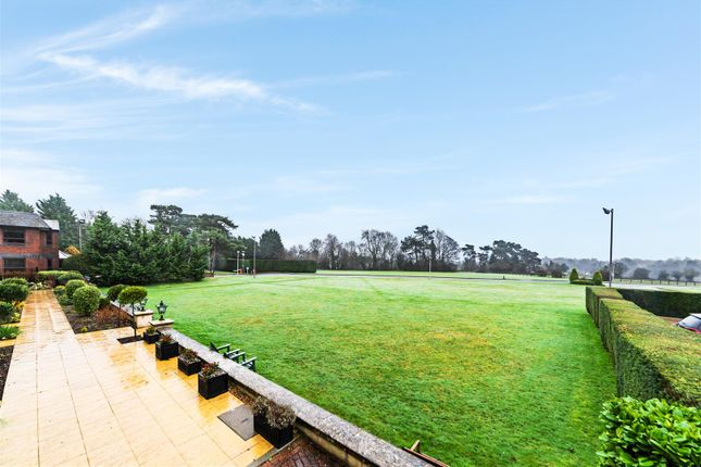 6 Kingswood Park, Kennedys ,( 25 From 36 ) (35 Of