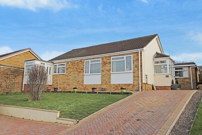 Thumbnail Detached bungalow to rent in Studland Park, Westbury