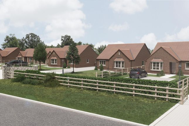Thumbnail Detached bungalow for sale in Plot 8 Walcott Grove, Walcott Road, Billinghay, Lincolnshire