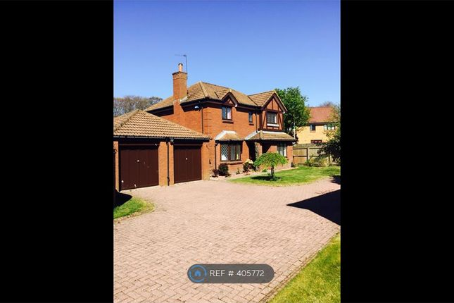 Thumbnail Detached house to rent in Woodcroft Avenue, Aberdeen