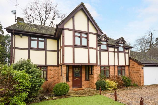 Thumbnail Detached house to rent in Holmes Close, Ascot