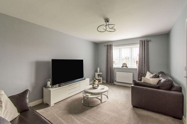 Thumbnail Detached house for sale in Pippin Way, Hatfield, Doncaster