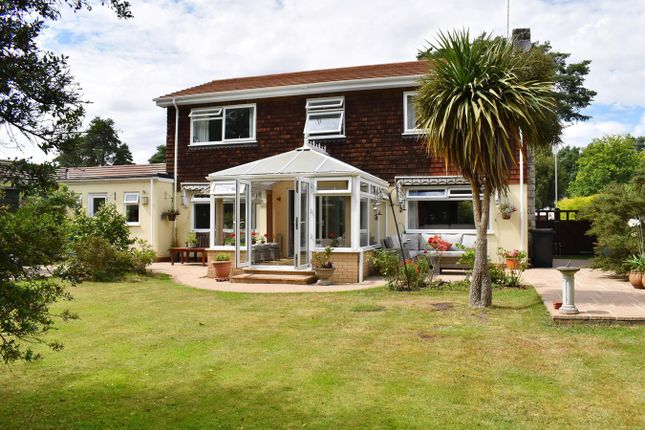 Thumbnail Detached house for sale in Grosvenor Close, Ashley Heath, Ringwood