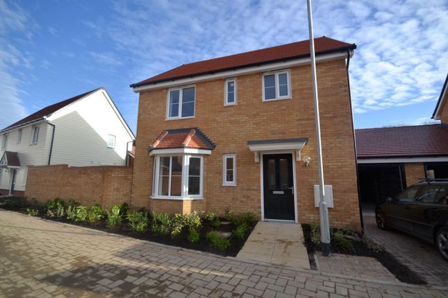 Thumbnail Detached house to rent in Colchester
