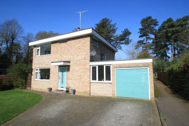 Thumbnail Detached house for sale in Bury St Edmunds