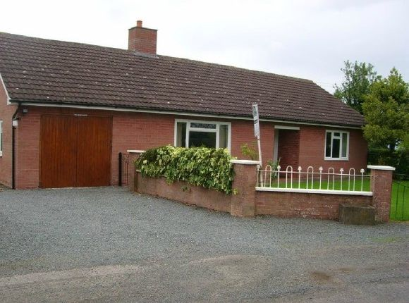 Thumbnail Detached bungalow to rent in Stoke Lane, Munderfield, Bromyard