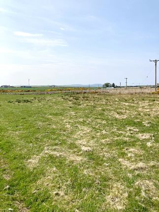 Land for sale in Burn Road, Rattar, Scarfskerry KW1