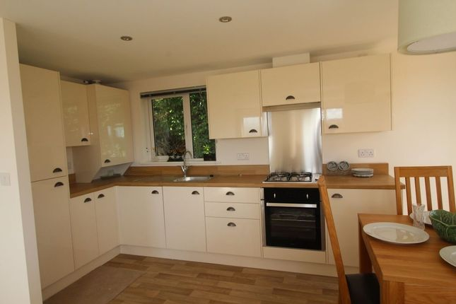Thumbnail Bungalow for sale in Trelowth, St. Austell