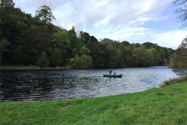 Picture No. 03 of Week 8 Lower Beauly Fishings, River Beauly, Beauly IV4