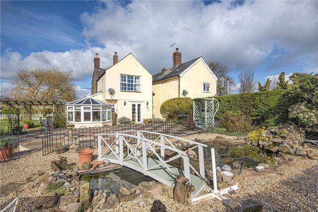 Garden of Thornhill, Stalbridge, Sturminster Newton, Dorset DT10