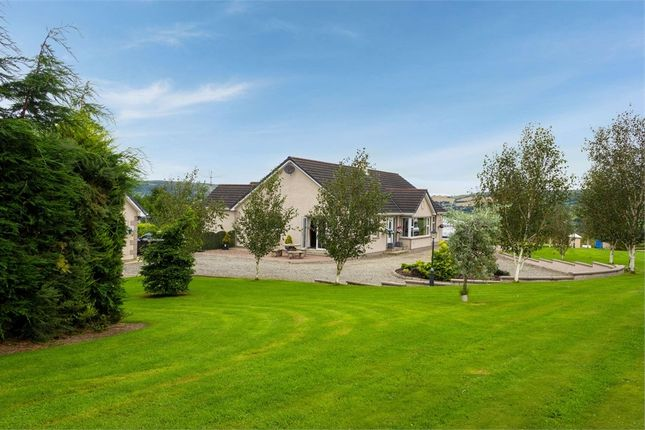 Thumbnail Detached house for sale in Killyclooney Road, Dunamanagh, Strabane, County Tyrone