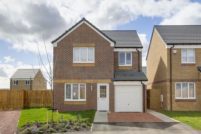 """Thumbnail Detached house for sale in """"The Leith II"""" at Gatehead Crescent, Bishopton"""