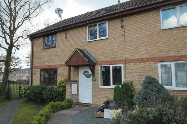 Thumbnail Terraced house to rent in Chinook, Highwoods, Colchester, Essex