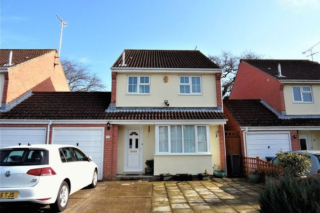 Thumbnail Detached house for sale in Juniper Close, Worthing