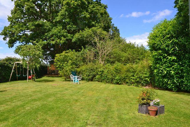 Garden of Lyons Road, Slinfold, Horsham RH13