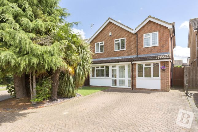 Thumbnail Detached house for sale in The Hedgerows, Northfleet, Gravesend, Kent