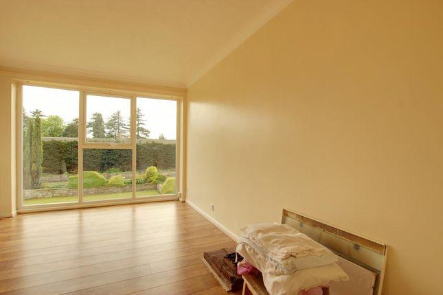 Thumbnail Flat to rent in Molescroft Mews, Beverley