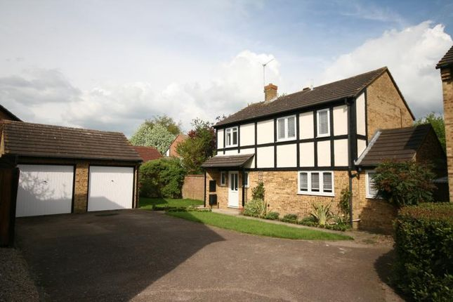 Thumbnail Detached house to rent in Broadleaf Avenue, Bishops Stortford, Herts