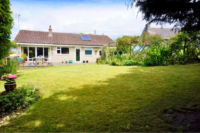 Thumbnail Detached bungalow for sale in Cheselbourne, Dorchester